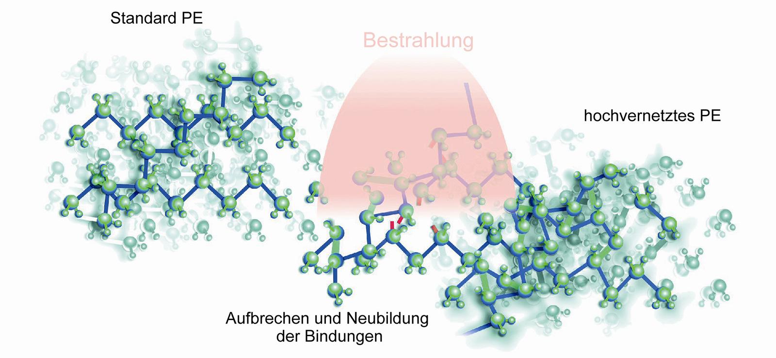 Abb. 1-16: Schemazeichnung der Herstellung hoch vernetzter Polyethylene (Mit freundlicher Genehmigung der Centerpulse Orthopedics Ltd. a Zimmer Company)