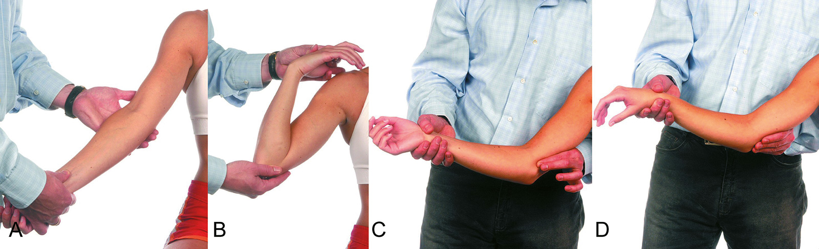 Abb. 2-38: Untersuchung des Ellenbogengelenks: Streckung (A), Beugung (B), Palpation des ulnaren Kollateralbandes (C) und Test der Valgusstabilität (D)