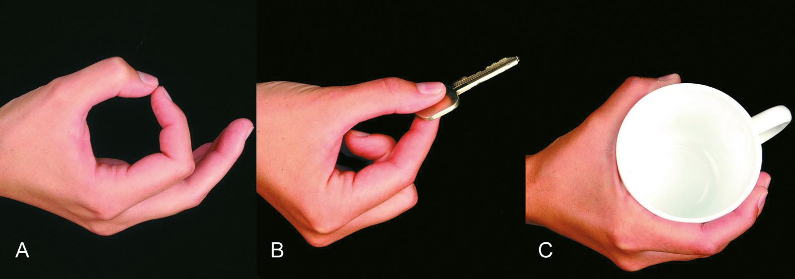 Abb. 7-29: Spitzgriff (A), Pinzettengriff (B) und Flaschengriff (C)